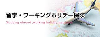 留学・ワーキングホリデー保険